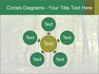 Dense forest PowerPoint Template - Slide 78
