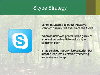 Dense forest PowerPoint Template - Slide 8