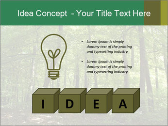Dense forest PowerPoint Template - Slide 80