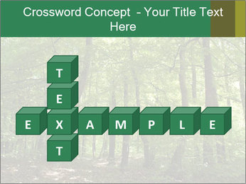 Dense forest PowerPoint Template - Slide 82