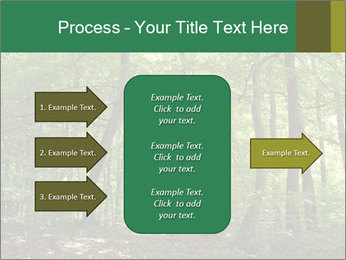Dense forest PowerPoint Template - Slide 85