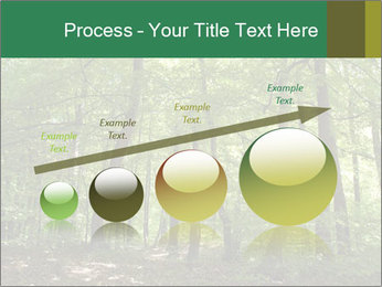 Dense forest PowerPoint Template - Slide 87