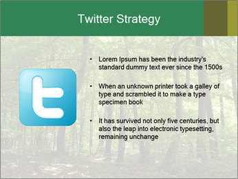 Dense forest PowerPoint Template - Slide 9