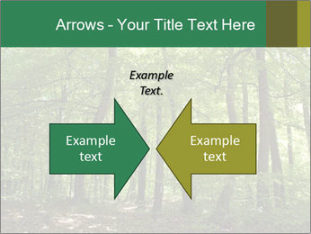 Dense forest PowerPoint Template - Slide 90