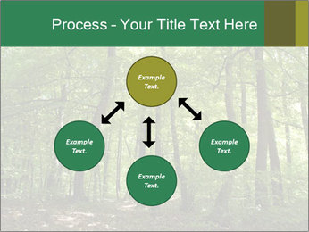 Dense forest PowerPoint Template - Slide 91