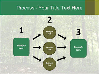 Dense forest PowerPoint Template - Slide 92