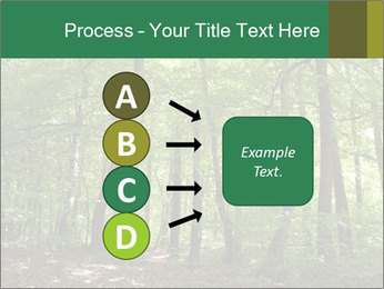Dense forest PowerPoint Template - Slide 94