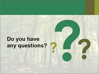 Dense forest PowerPoint Template - Slide 96