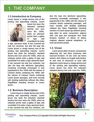 0000092126 Word Template - Page 3