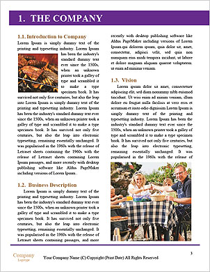 0000092127 Word Template - Page 3