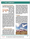 0000092128 Word Templates - Page 3