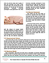 0000092128 Word Template - Page 4