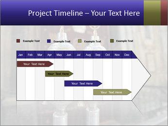 Silver rimonims PowerPoint Template - Slide 25
