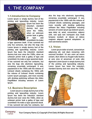 0000092130 Word Template - Page 3