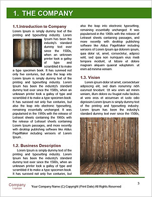 0000092131 Word Template - Page 3