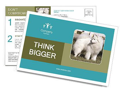 0000092133 Postcard Templates