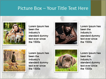 Pyrenees dog PowerPoint Templates - Slide 14