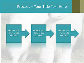 Pyrenees dog PowerPoint Templates - Slide 88