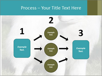 Pyrenees dog PowerPoint Template - Slide 92