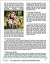 0000092133 Word Templates - Page 4