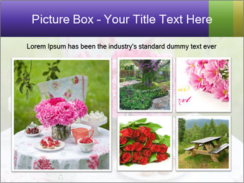Picnic table PowerPoint Template - Slide 19