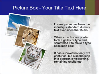 Wolf PowerPoint Templates - Slide 17