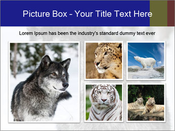 Wolf PowerPoint Templates - Slide 19