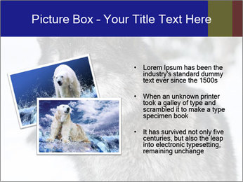 Wolf PowerPoint Templates - Slide 20