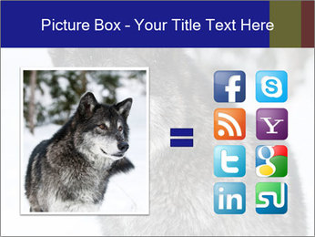 Wolf PowerPoint Templates - Slide 21