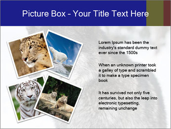 Wolf PowerPoint Templates - Slide 23