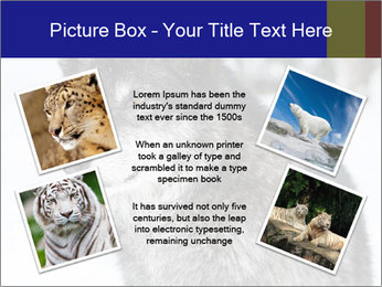 Wolf PowerPoint Templates - Slide 24