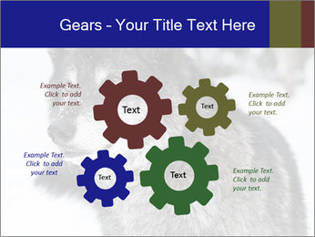 Wolf PowerPoint Templates - Slide 47