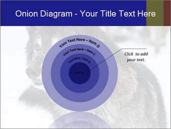 Wolf PowerPoint Templates - Slide 61