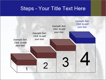 Wolf PowerPoint Templates - Slide 64