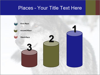 Wolf PowerPoint Templates - Slide 65