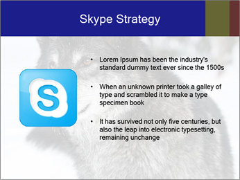 Wolf PowerPoint Templates - Slide 8