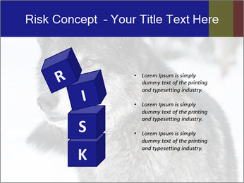Wolf PowerPoint Templates - Slide 81
