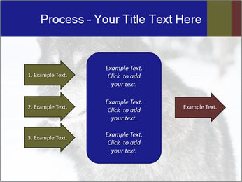 Wolf PowerPoint Templates - Slide 85