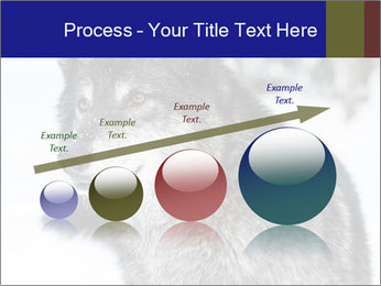 Wolf PowerPoint Templates - Slide 87