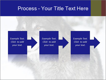 Wolf PowerPoint Templates - Slide 88