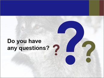 Wolf PowerPoint Templates - Slide 96