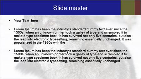 Wolf PowerPoint Template - Slide 2