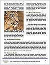 0000092136 Word Templates - Page 4