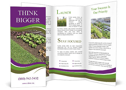 0000092138 Brochure Template