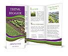 0000092138 Brochure Templates
