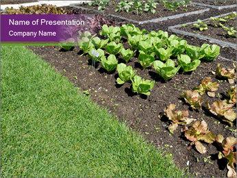 Garden PowerPoint Template - Slide 1