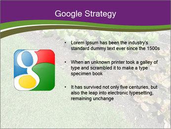 Garden PowerPoint Template - Slide 10