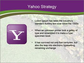 Garden PowerPoint Template - Slide 11