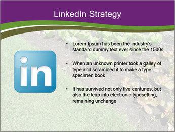 Garden PowerPoint Template - Slide 12
