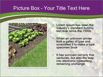 Garden PowerPoint Template - Slide 13
